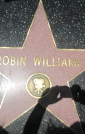 One Picture, One Star, Robin Williams